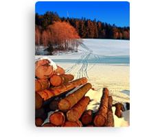 Timber in winter wonderland   landscape photography Canvas Print