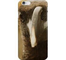 Mountain Raven iPhone Case/Skin