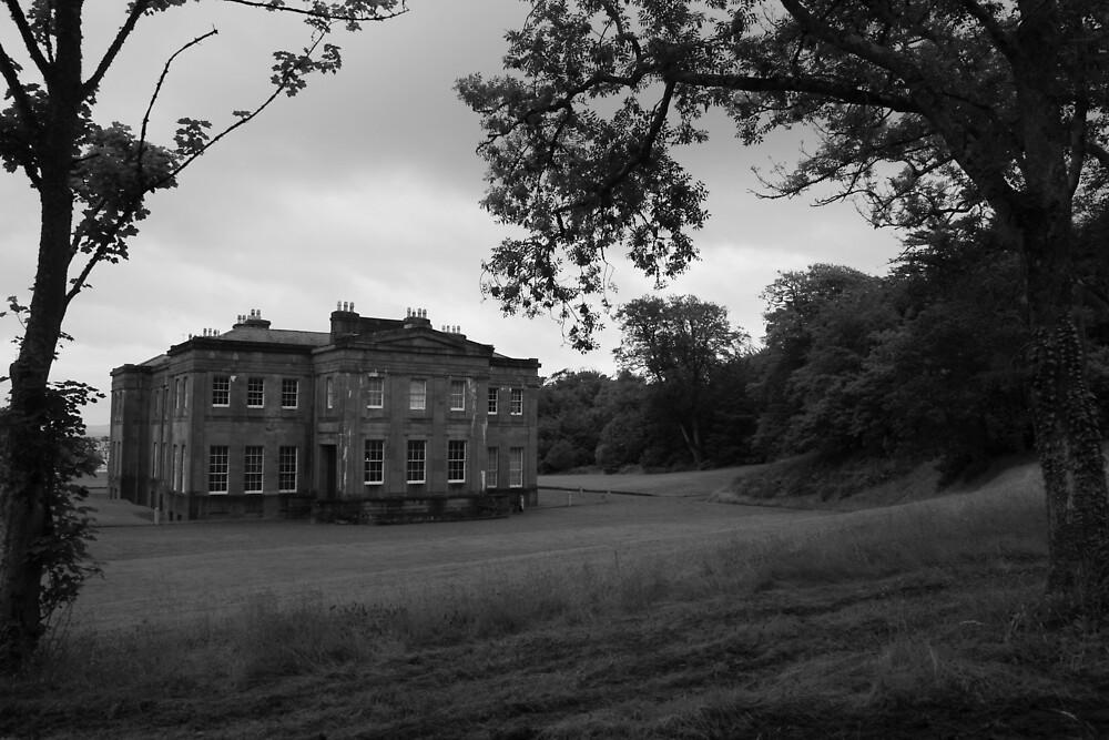 Lisadell House 2 by John Quinn