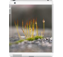Dew Drops I iPad Case/Skin