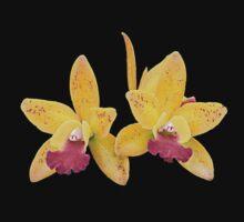 Orchids #6 by photorolandi