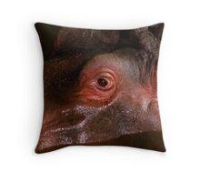 In the eye of a Hippopotamus........ Throw Pillow