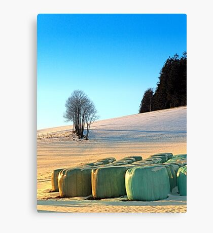 Hay bales in winter wonderland | landscape photography Canvas Print