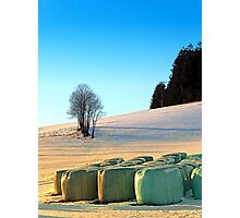 Hay bales in winter wonderland | landscape photography Photographic Print