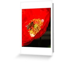 Busy Bee. Greeting Card