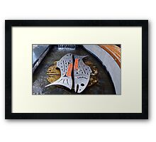 Chinook Fountain Framed Print