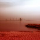 Red Fog. by Artist Dapixara
