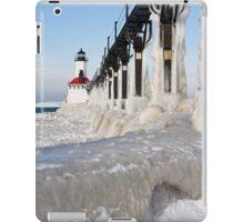 Ice Coated iPad Case/Skin