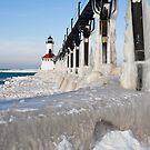 Ice Coated by Adam Bykowski