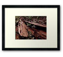 Redwood Loaves Framed Print