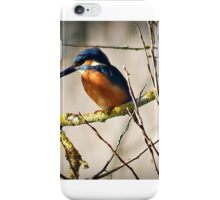 I found his Territorial area. iPhone Case/Skin