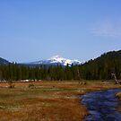 Mt. Lassen by flyfish70