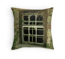 Old Cottage Window Throw Pillow