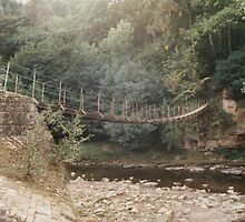 Rope Bridge by Edward Denyer