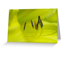 Yellow Elusion Greeting Card