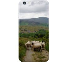 Sheep on the hillside iPhone Case/Skin