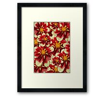Blooming Flowers and Petals - Red White Yellow Framed Print