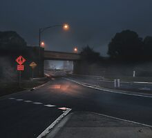 Fog Fussell St bridge, Ballarat. by lawrencew