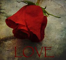 Love Textured Rose Romantic Series 1 by Adri Turner