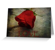 Love Textured Rose Romantic Series 1 Greeting Card