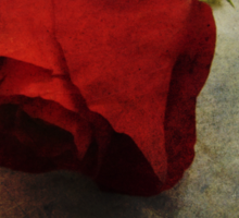 Love Textured Rose Romantic Series 1 Sticker