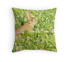 Dinky Update Throw Pillow
