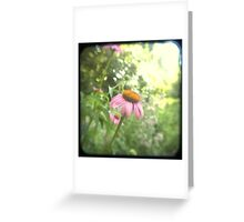 Old Pink Greeting Card