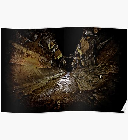 Why You Never Wallpaper a Sewer..... Poster
