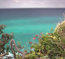 Stradbroke Island Cliff Walk by Helen Phillips