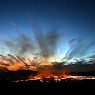 Burning the paddocks by Miriam Shilling