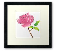 A stem pink rose on white Framed Print