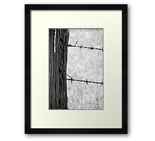 barbed wire Framed Print