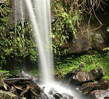 Waterfall Mount Tamborine by Helen Phillips