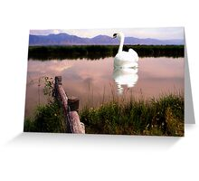 Cache Valley Summer Day Greeting Card