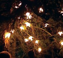 Anglesey Abbey, Winter Lights 2014 #3 by NA-Designs