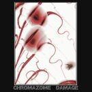 CHROMAZOME DAMAGE by OTOFURU