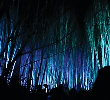Anglesey Abbey, Winter Lights 2014 #5 by NA-Designs