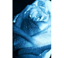 Ice Blue Rose Tears Photographic Print