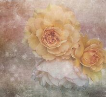 Three Roses by Lynn Bolt