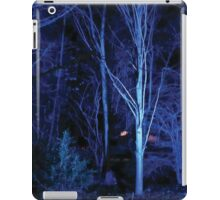 Anglesey Abbey, Winter Lights 2014 #7 iPad Case/Skin