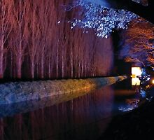 Anglesey Abbey, Winter Lights 2014 #9 by NA-Designs