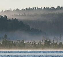 Fog  by Katariina Lonnakko
