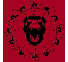 12 Monkeys - Black in Red Photographic Print