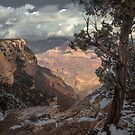 The Grand Canyon by Zohar Lindenbaum