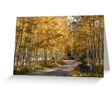 Flagstaff Color Greeting Card