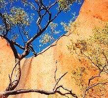 Under Uluru by Wayne Holman