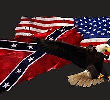 Confederate Flag, US Flag, Bald Eagle,Patriotic by Val  Brackenridge