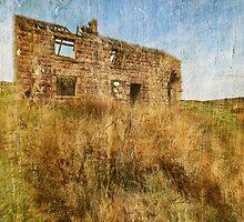 Abandoned Cottage by Elizabeth L Taylor