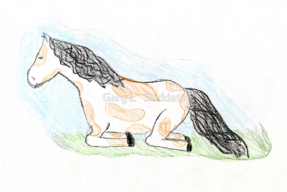 Sleepy Horse by Gary L   Suddath