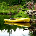 Kayak In the Garden by Alvin-San Whaley